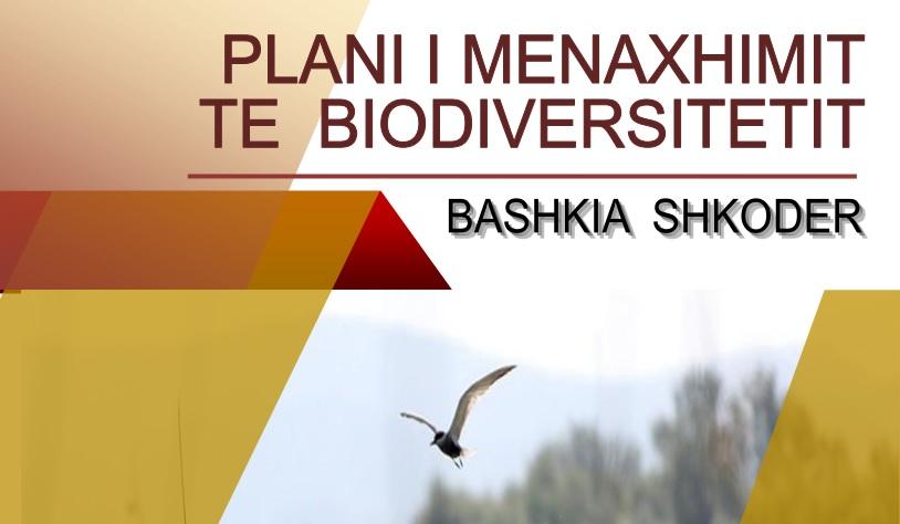 biodiversiteti130117